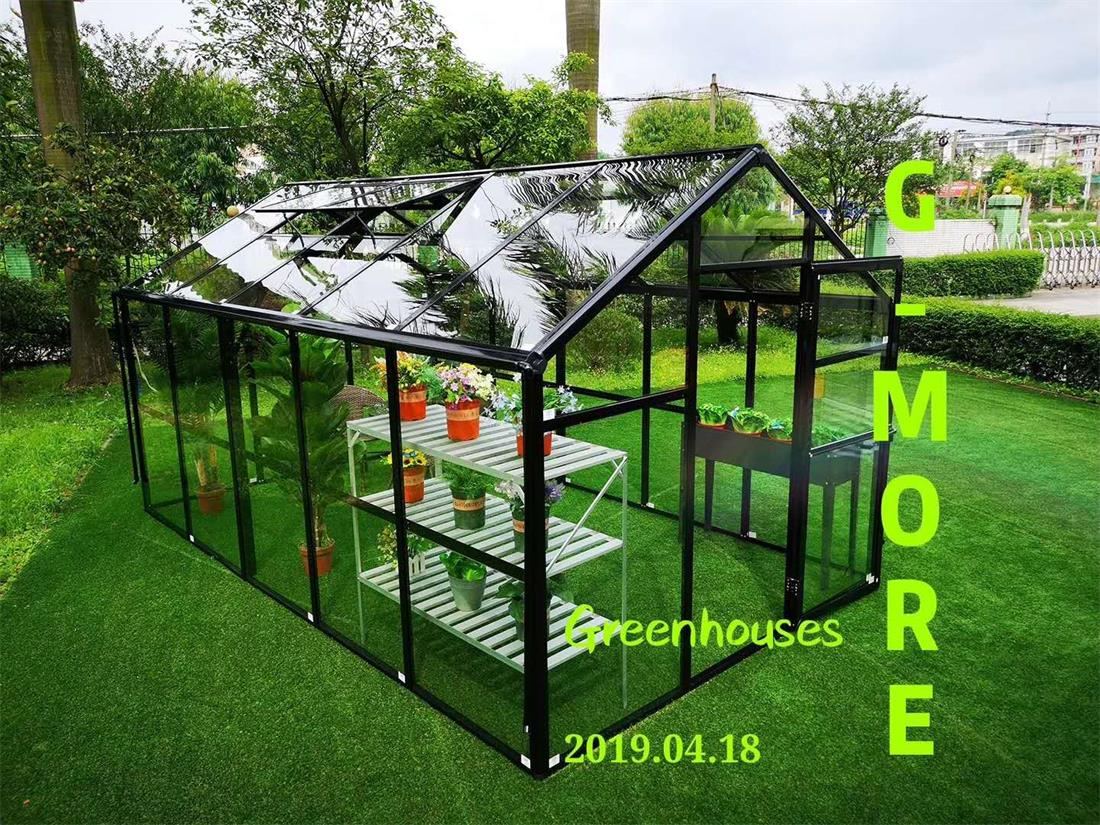 G-MORE