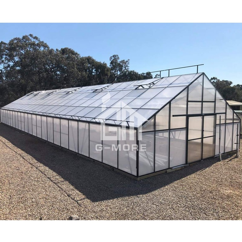 25'x80' G-more Titan Series Giant Hobby Greenhouse 7M Wide 24M Long Greenhouse - GM32724